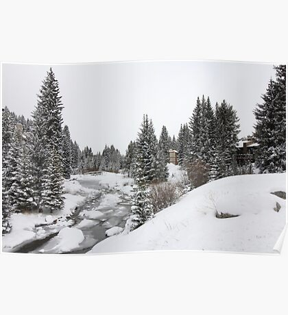 Colorado Snow and Trees with Creek Poster