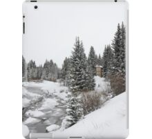 Colorado Snow and Trees with Creek iPad Case/Skin
