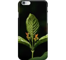 Trizoid Plant iPhone Case/Skin