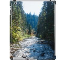 Scenic River  iPad Case/Skin
