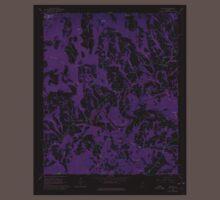 USGS TOPO Map Alabama AL Nectar 304658 1961 24000 Inverted Baby Tee