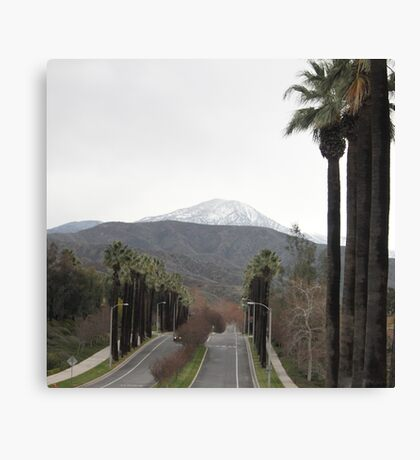 A view of the road that runs up the hill to the foothills..... Canvas Print