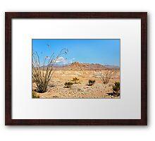 Dead Sticks Bloom in the Desert Framed Print