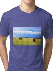 African Elephants Tri-blend T-Shirt
