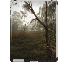 Frosty and Foggy Morning at Macgregor Nature Reserve (ACT/Australia) (11) iPad Case/Skin