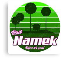 Visit Namek Canvas Print