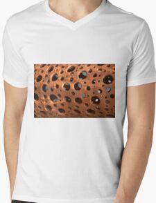 holes Mens V-Neck T-Shirt