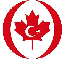 Turkish Canadian Multinational Patriot Flag Series Photographic Print