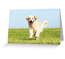 Cute Dog Puppy Running Greeting Card