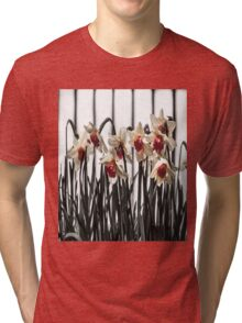 Daffodils in Spring Tri-blend T-Shirt