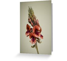 A Desert Flower Greeting Card