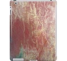 Peach cool vains iPad Case/Skin