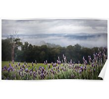 Lavender Dreams - 2008 Poster