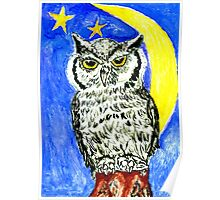 Night Owl Art Poster