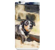 Hunter Dog iPhone Case/Skin