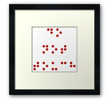 Do Not Touch in Braille in Red Framed Print