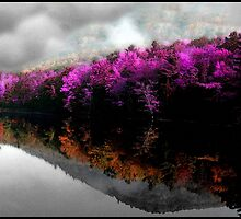 A Memory Inside a Dream by Wayne King