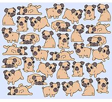 Pugs pattern Photographic Print