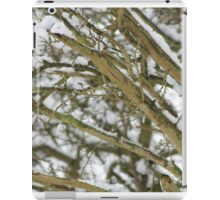 Snowy Branches iPad Case/Skin