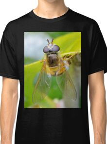 My First Hoverfly of 2016 Classic T-Shirt