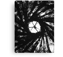Natural Witchcraft Canvas Print