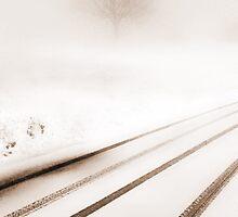 SNOW STORM... by Angelika  Vogel