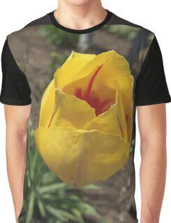 Gold Rush Graphic T-Shirt