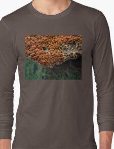 Macro of New Mexico Lichen on Desert Rock #2 Long Sleeve T-Shirt