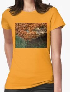 Macro of New Mexico Lichen on Desert Rock #2 Womens Fitted T-Shirt