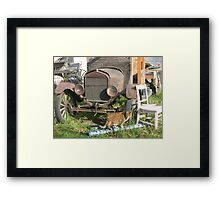 old truck and a tiny dancer Framed Print