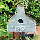Bird Barn by vanhagen