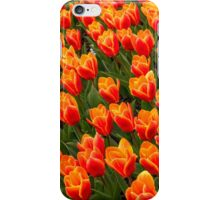 A World of Tulips iPhone Case/Skin