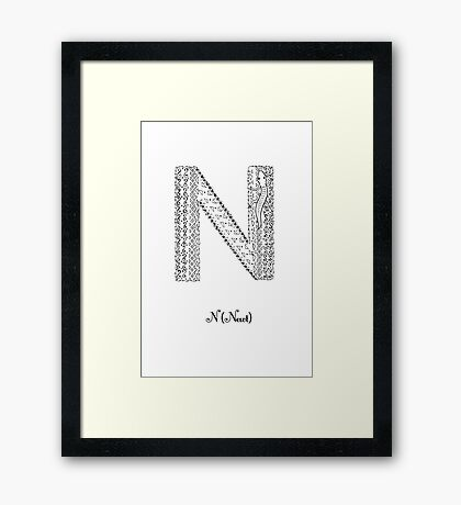 N is for Newt Framed Print