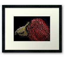 Abstract Bird Framed Print