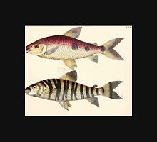 Naturgeschichte in Bildern mit erläuterndem Text E Strack 1820 Lief 4 Fish 120 Unisex T-Shirt