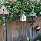 Bird Village by vanhagen