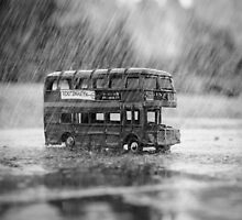 Bus 137 by Mark Williams