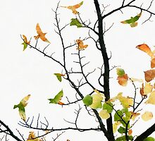 Bird-Shaped Leaves by Andrew Bret Wallis