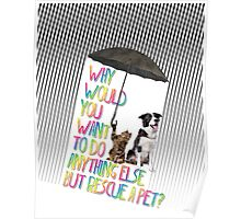 Why  would  you  want  to do  anything else  but rescue a pet? Poster