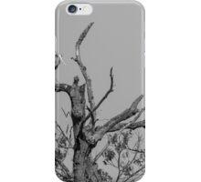 Great Blue Heron 2016-1 iPhone Case/Skin