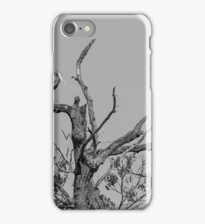 Great Blue Heron 2016-1 iPhone Case/Skin