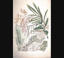 Rumphia sive Commentationes botanicæ imprimis de plantis Indiæ Orientalis tum penitus incognitis tum quæ Blume cognomine Rumphius 1848 V1 V4 596 Unisex T-Shirt
