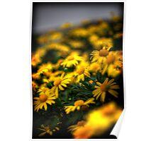 SL-WEEK 38 / Yellow Poster