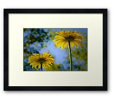 Under Two Leopard Bane Framed Print