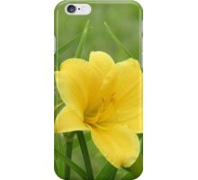 Beautiful Yellow Flower iPhone Case/Skin