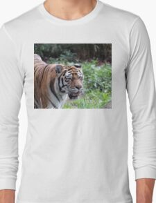 Are You Lunch Long Sleeve T-Shirt