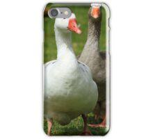 Waddling Geese iPhone Case/Skin