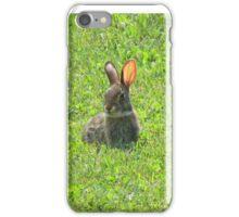 Hoppy iPhone Case/Skin