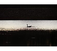 Lone Scout On The Lake Photographic Print