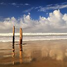 Posts On The Shore by James Eddy